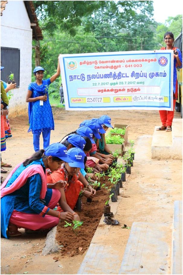 NSS - Tree Planting 1
