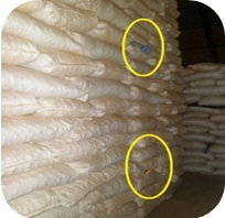Placement of Stack Probe Traps in Turmeric warehouse